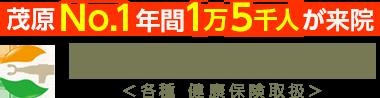 「茂原しん整骨院」茂原で口コミ評価NO.1|交通事故治療もお任せ ロゴ